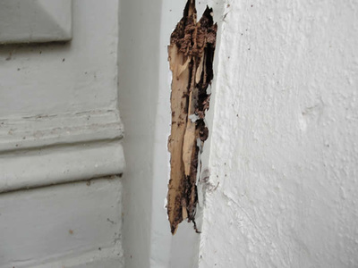 Termite Damage Repair to Door Jamb Melbourne, Pro Team Constructions